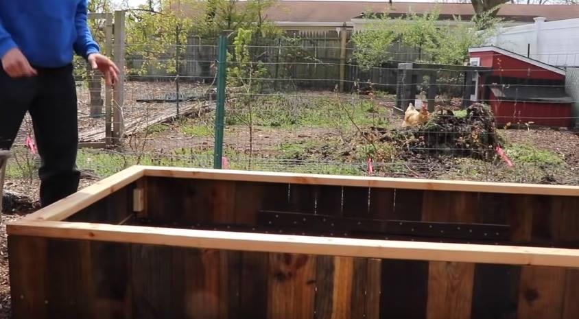ogródek warzywny w skrzyniach